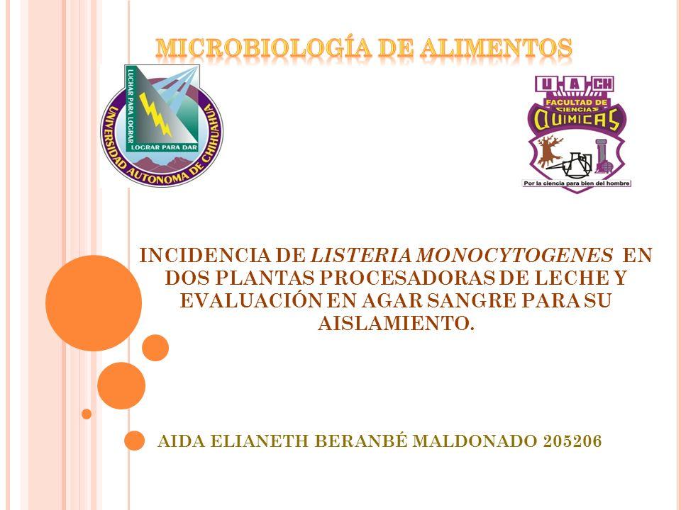 AIDA ELIANETH BERANBÉ MALDONADO 205206