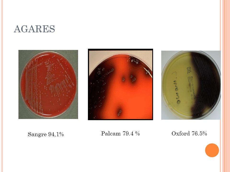 AGARES Sangre 94,1% Palcam 79.4 % Oxford 76.5%
