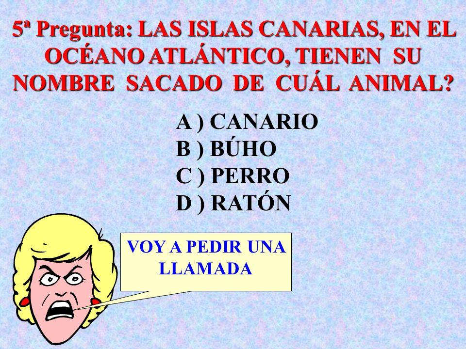 5ª Pregunta: LAS ISLAS CANARIAS, EN EL OCÉANO ATLÁNTICO, TIENEN SU NOMBRE SACADO DE CUÁL ANIMAL