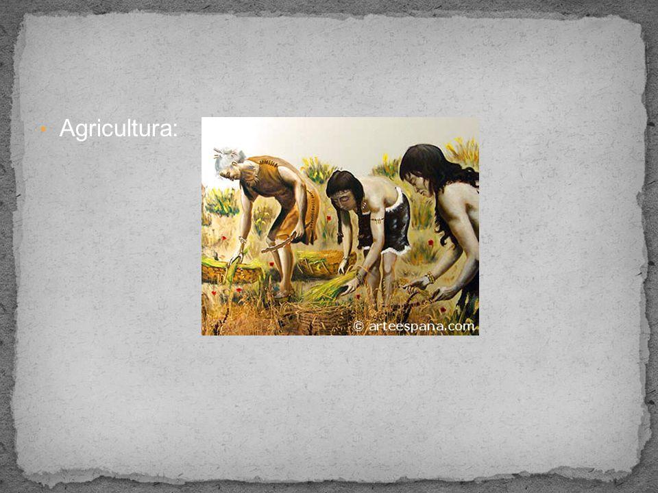 Agricultura: