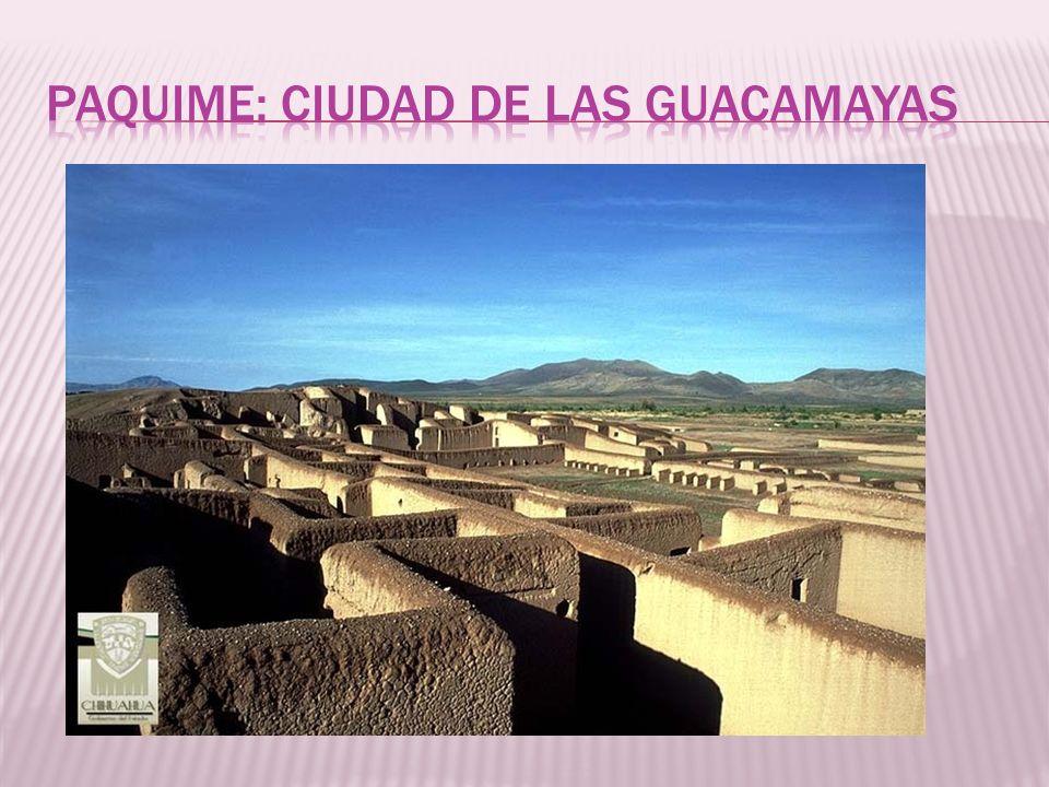 Paquime: ciudad de las guacamayas