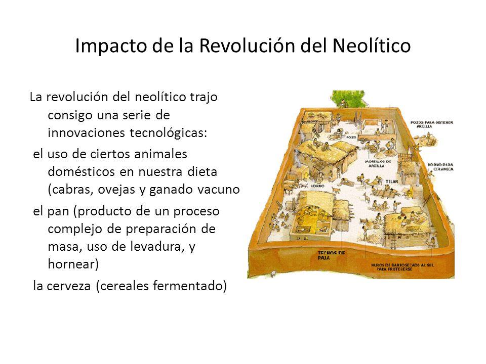 Impacto de la Revolución del Neolítico