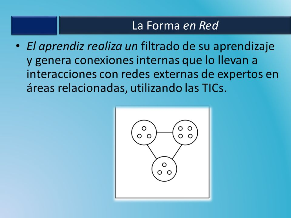 La Forma en Red