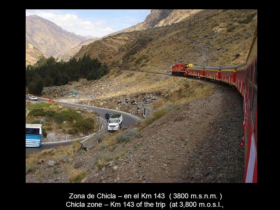 Zona de Chicla – en el Km 143 ( 3800 m.s.n.m. )