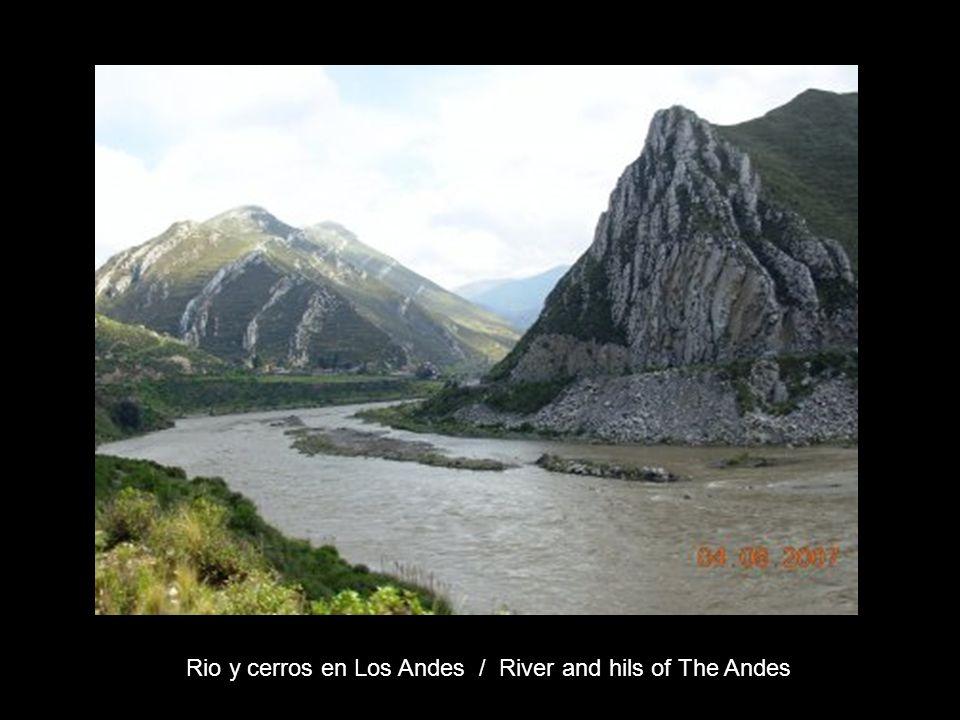Rio y cerros en Los Andes / River and hils of The Andes