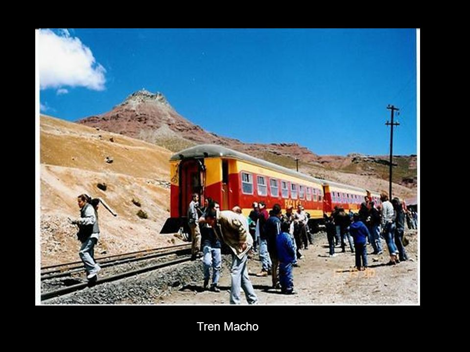 Tren Macho