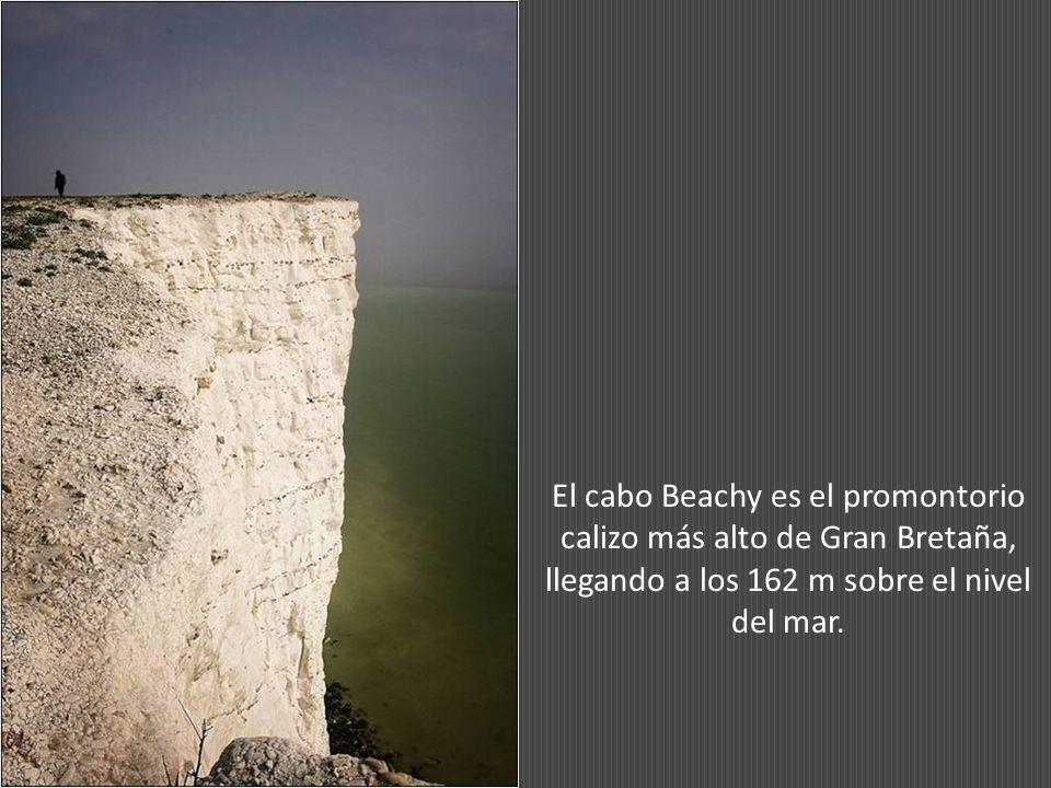 El cabo Beachy es el promontorio calizo más alto de Gran Bretaña, llegando a los 162 m sobre el nivel del mar.