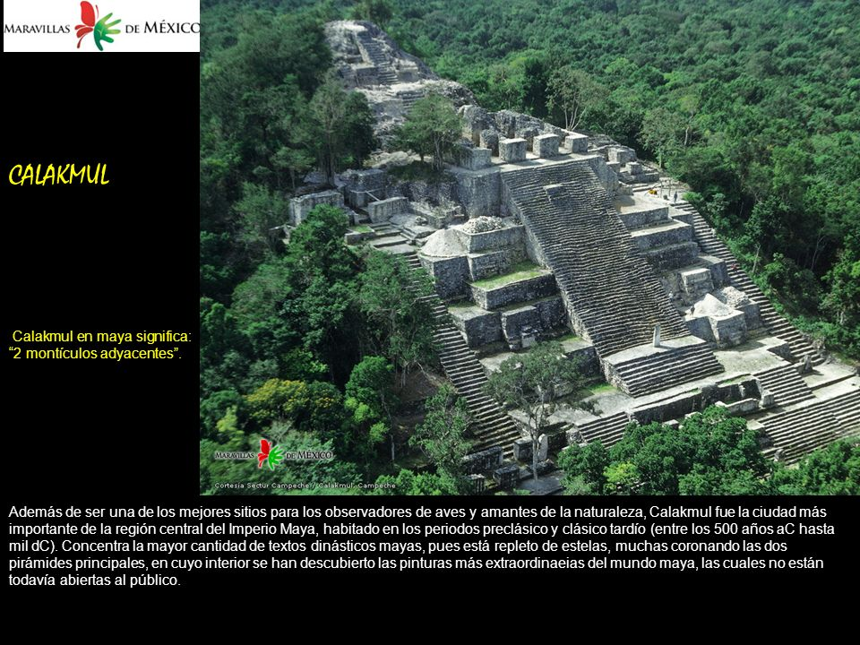 CALAKMUL Calakmul en maya significa: 2 montículos adyacentes .
