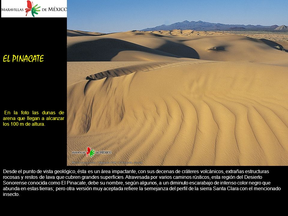 EL PINACATE En la foto las dunas de arena que llegan a alcanzar los 100 m de altura.
