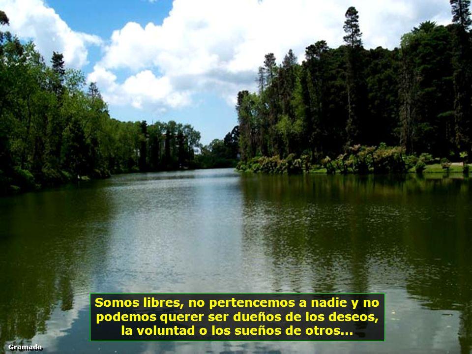 Somos libres, no pertencemos a nadie y no podemos querer ser dueños de los deseos, la voluntad o los sueños de otros...