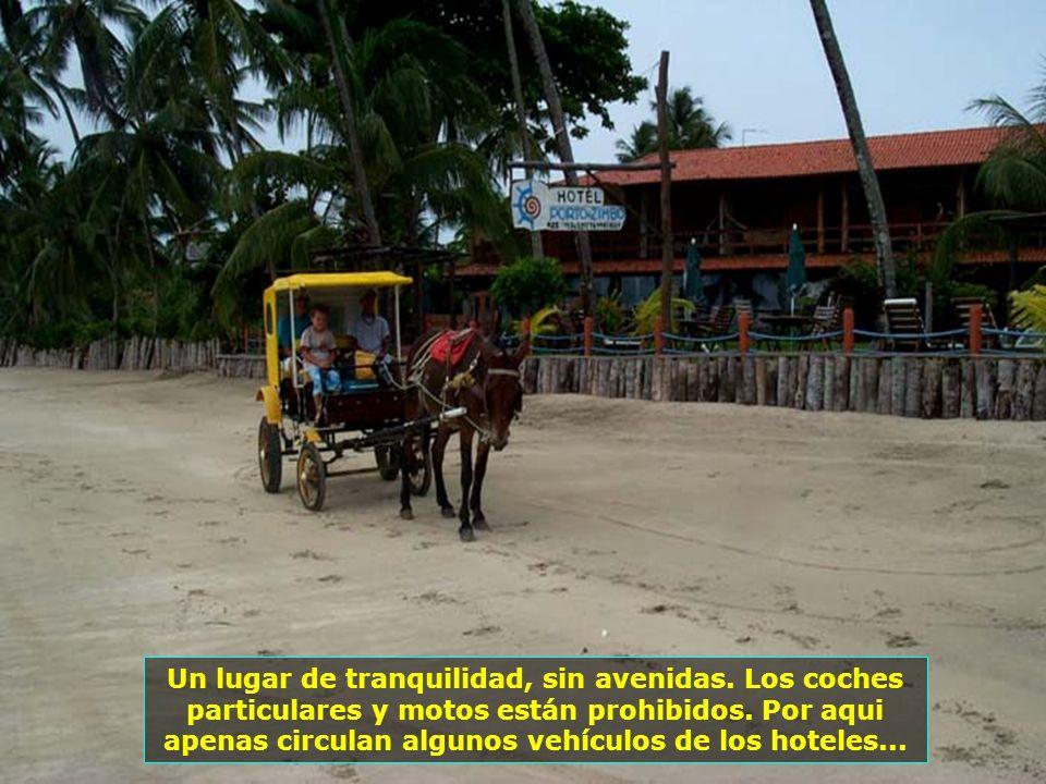 P0013663 - MORRO DE SÃO PAULO - CHARRETE FRENTE AO HOTEL-700