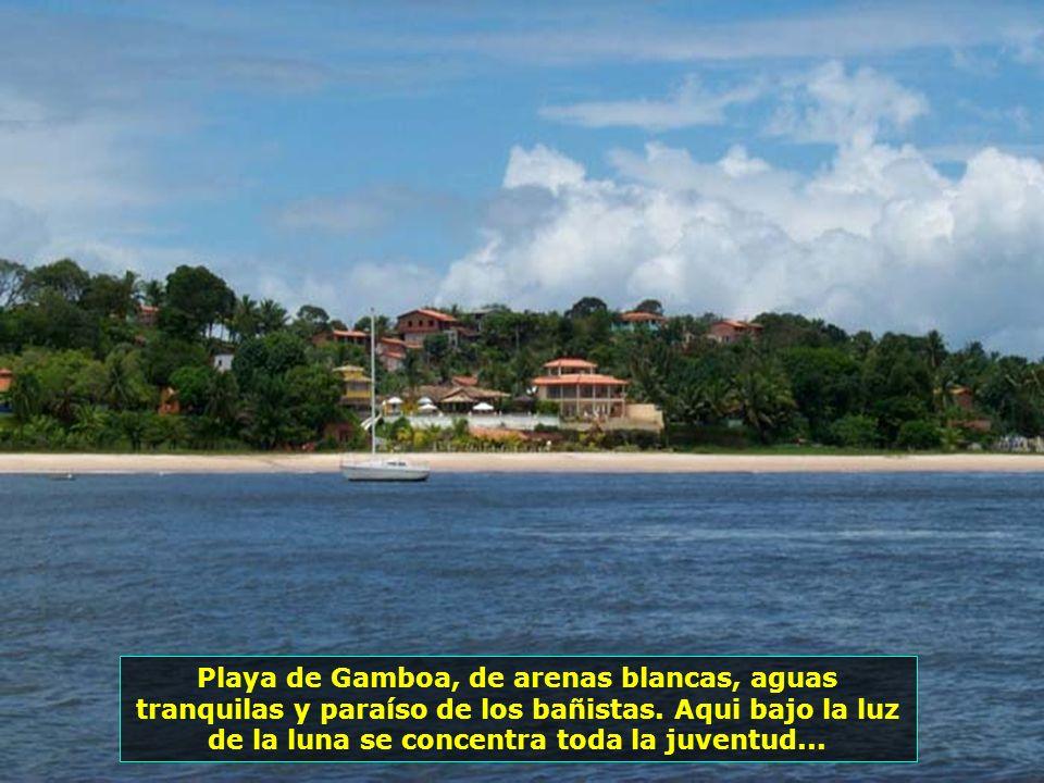 P0013682 - MORRO DE SÃO PAULO - PRAIA DA GAMBOA-700