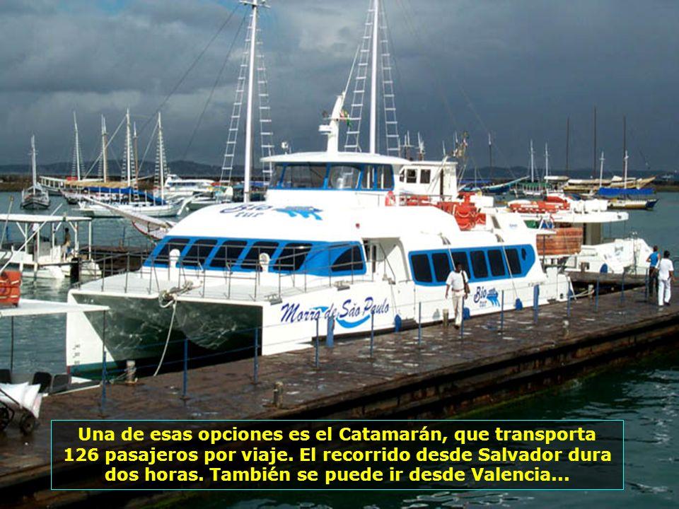 P0013564 - SALVADOR - CATAMARÃ-700