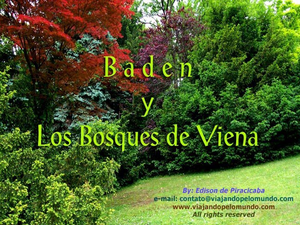 P0007155 - BADEN - CAPA INICIAL EM ESPANHOL COM LEGENDA 0 FONTE PROSE ANTIQUE Regular 60 pt