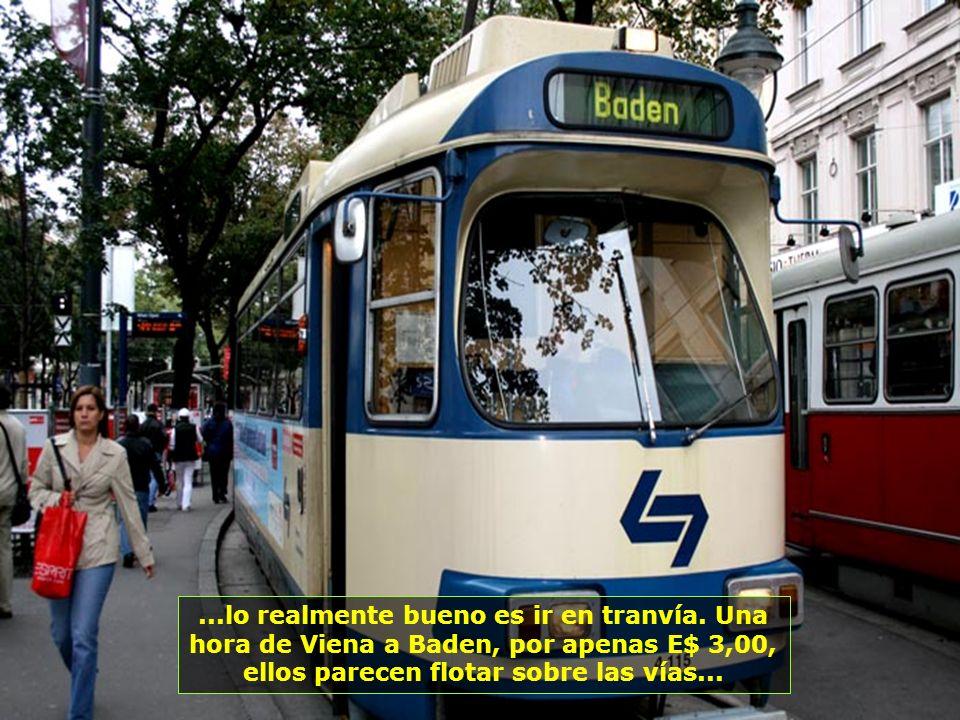 IMG_5550 - ÁUSTRIA - VIENA - TRENZINHO PARA BADEN-700.jpg