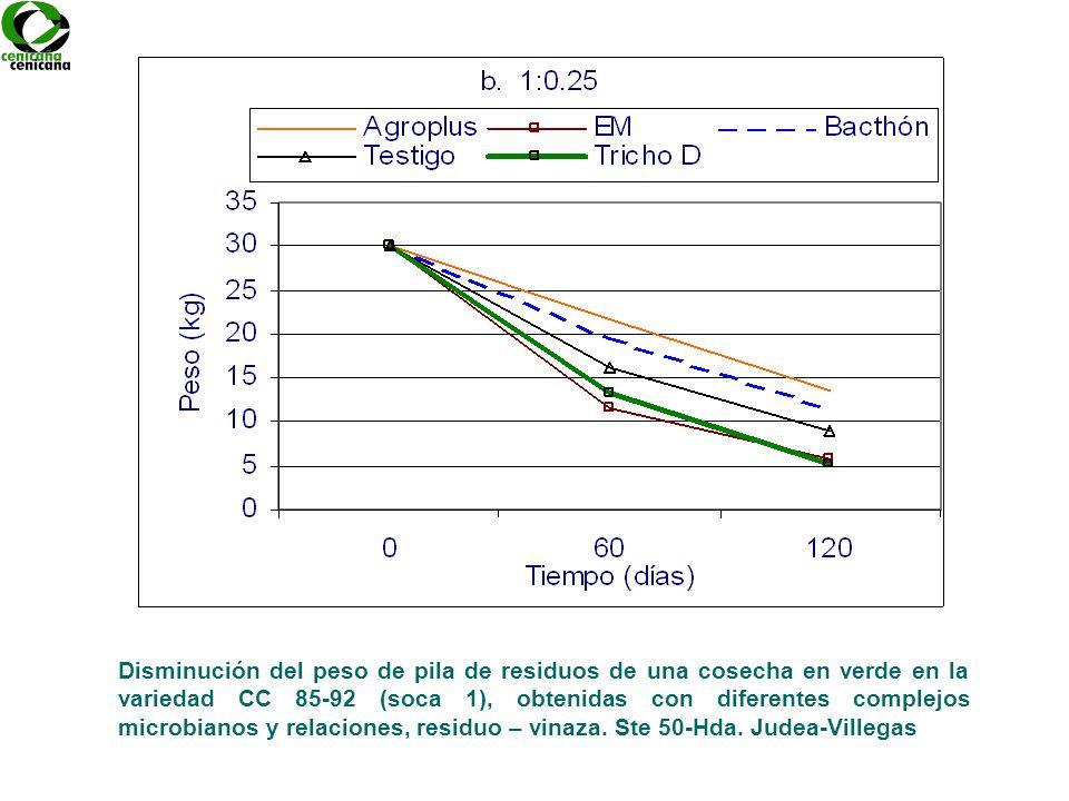 Disminución del peso de pila de residuos de una cosecha en verde en la variedad CC 85-92 (soca 1), obtenidas con diferentes complejos microbianos y relaciones, residuo – vinaza.
