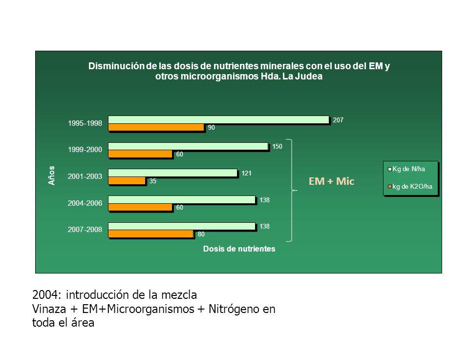 EM + Mic 2004: introducción de la mezcla Vinaza + EM+Microorganismos + Nitrógeno en toda el área