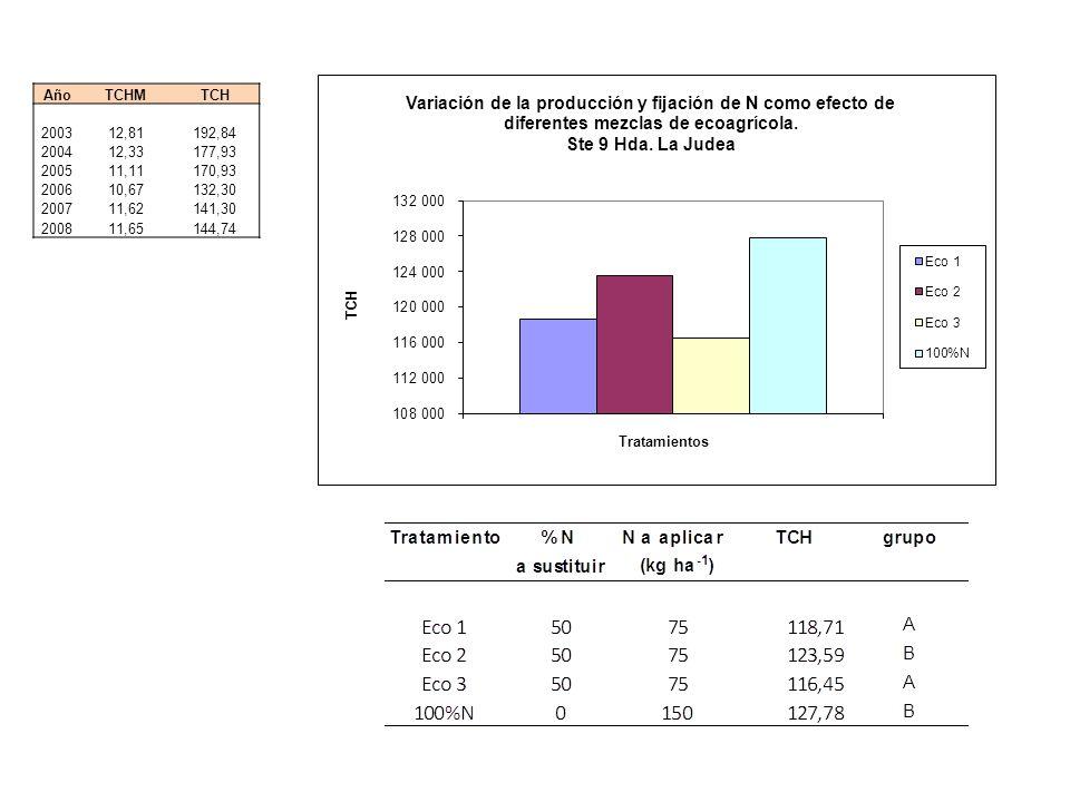 Año TCHM. TCH. 2003. 12,81. 192,84. 2004. 12,33. 177,93. 2005. 11,11. 170,93. 2006. 10,67.