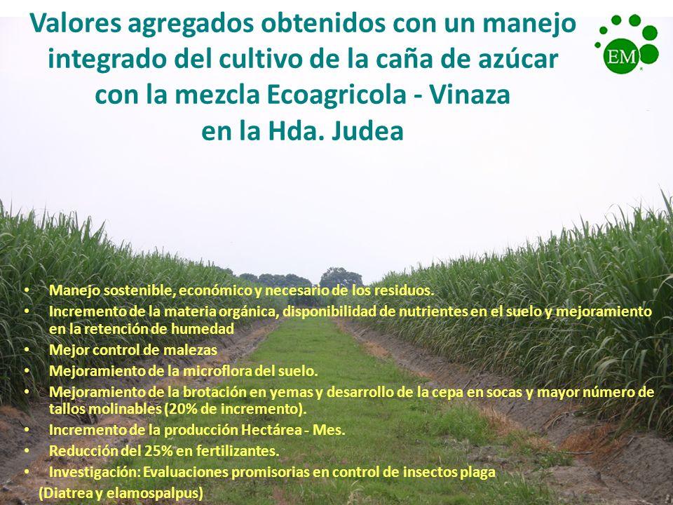 Valores agregados obtenidos con un manejo integrado del cultivo de la caña de azúcar con la mezcla Ecoagricola - Vinaza en la Hda. Judea