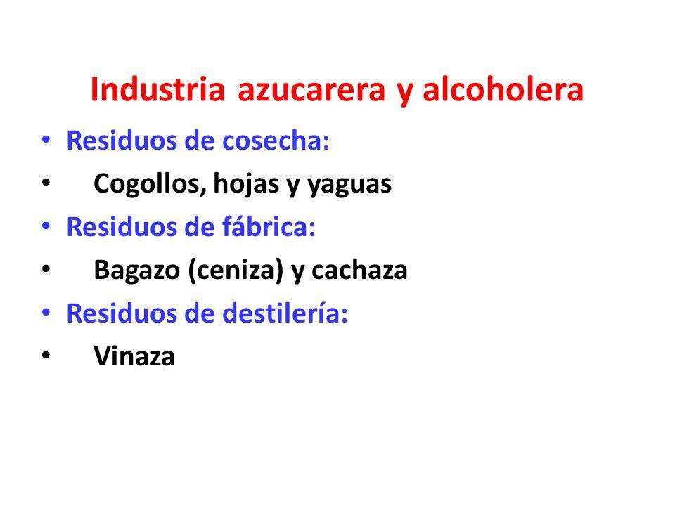 Industria azucarera y alcoholera
