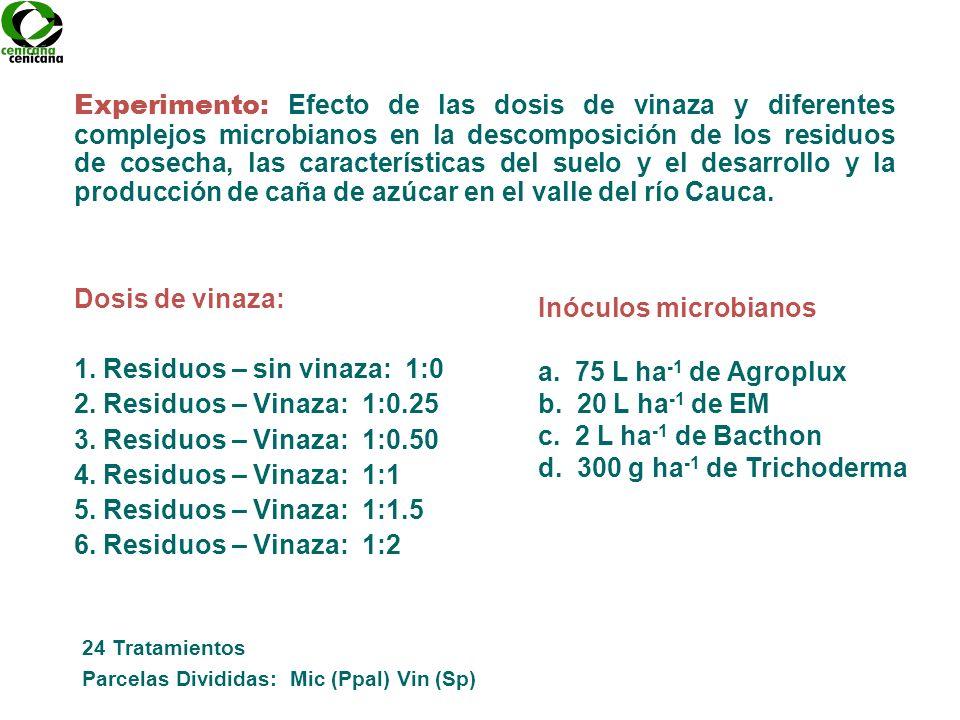 1. Residuos – sin vinaza: 1:0 2. Residuos – Vinaza: 1:0.25