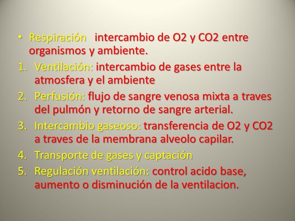 Respiración intercambio de O2 y CO2 entre organismos y ambiente.