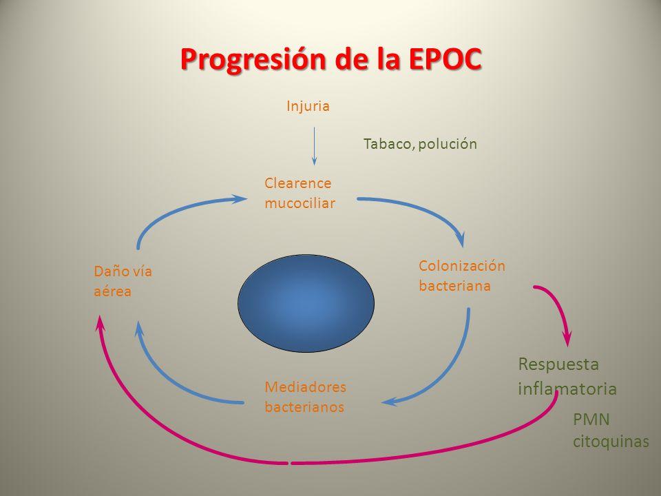 Progresión de la EPOC Respuesta inflamatoria PMN citoquinas Injuria