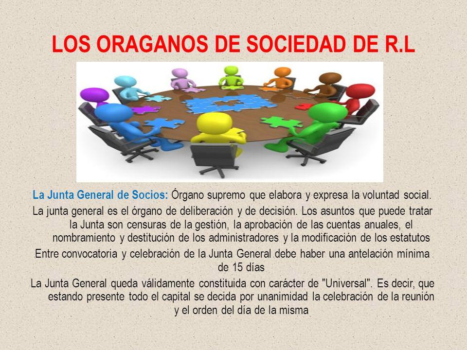 LOS ORAGANOS DE SOCIEDAD DE R.L