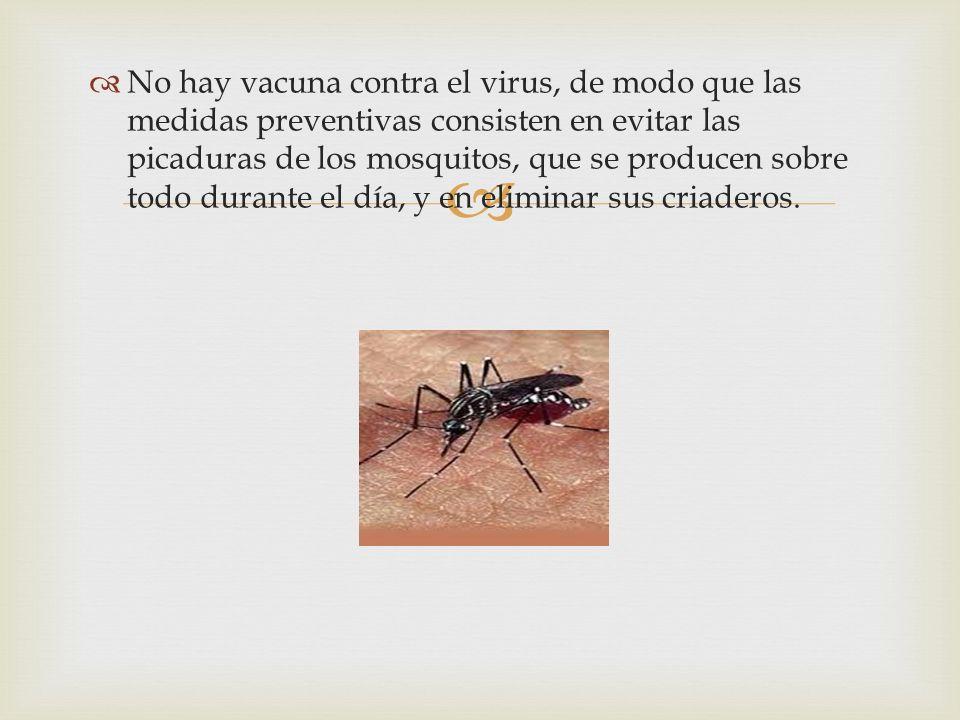 No hay vacuna contra el virus, de modo que las medidas preventivas consisten en evitar las picaduras de los mosquitos, que se producen sobre todo durante el día, y en eliminar sus criaderos.