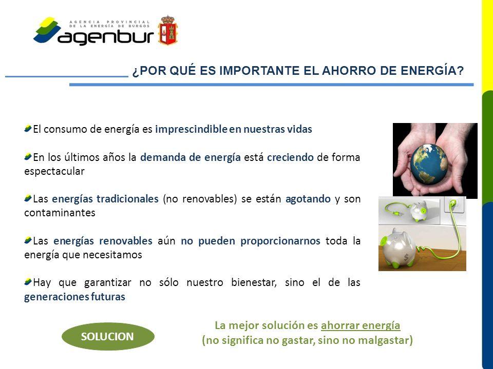 ¿POR QUÉ ES IMPORTANTE EL AHORRO DE ENERGÍA
