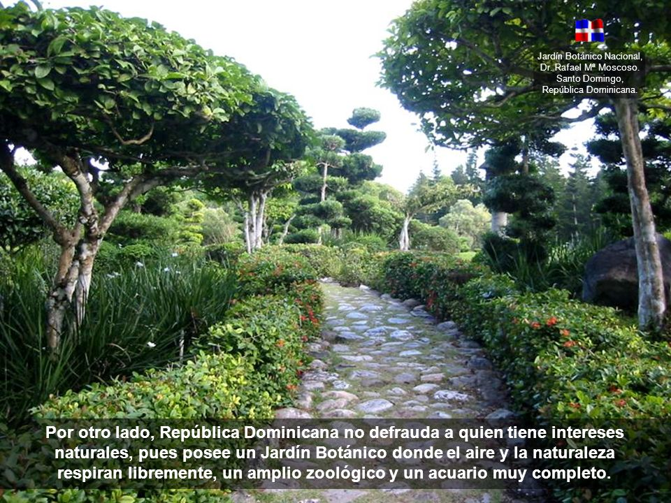 Jardín Botánico Nacional, Dr. Rafael Mª Moscoso