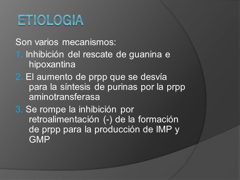 ETIOLOGIA Son varios mecanismos: