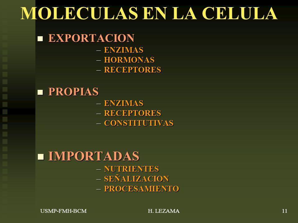 MOLECULAS EN LA CELULA IMPORTADAS EXPORTACION PROPIAS ENZIMAS HORMONAS