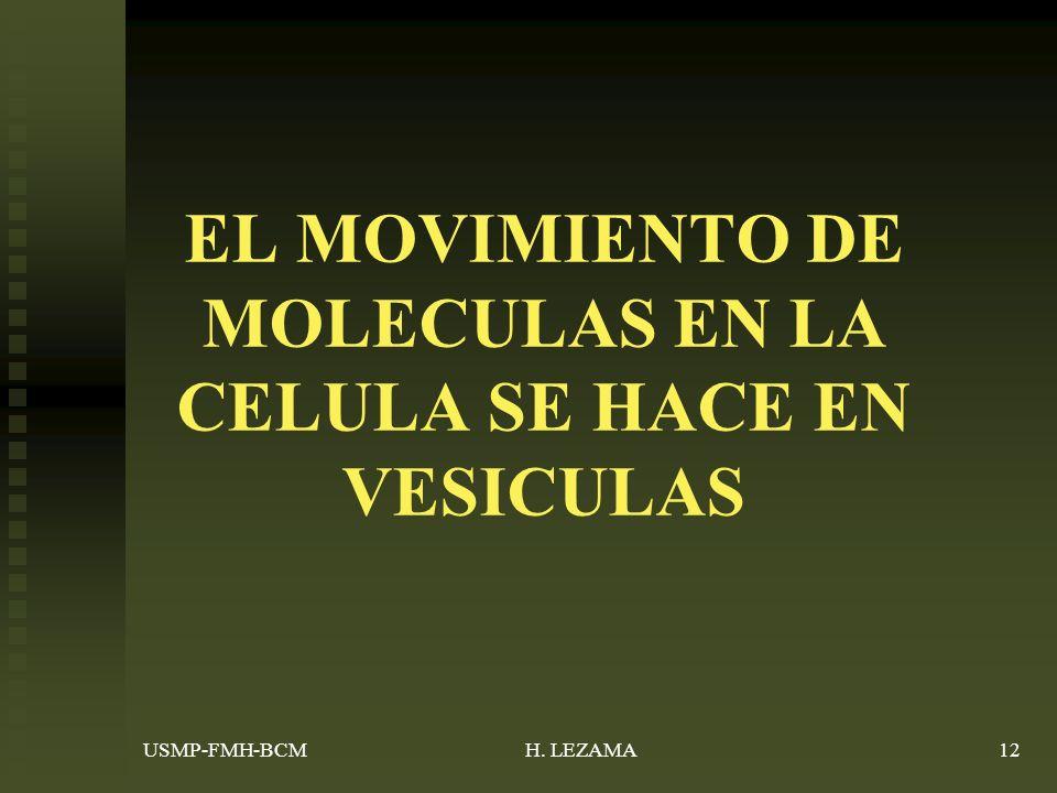 EL MOVIMIENTO DE MOLECULAS EN LA CELULA SE HACE EN VESICULAS