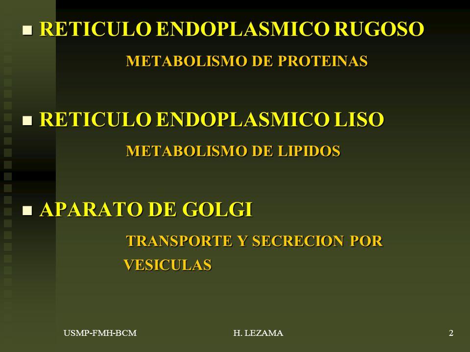 RETICULO ENDOPLASMICO RUGOSO METABOLISMO DE PROTEINAS