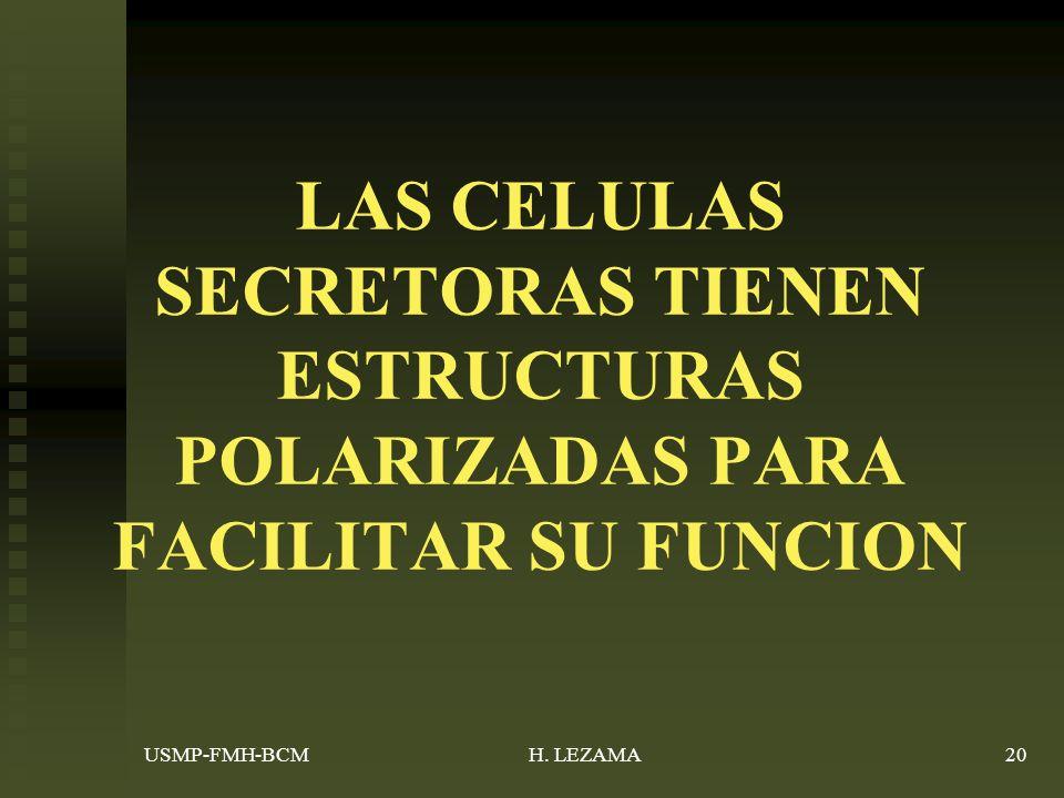 LAS CELULAS SECRETORAS TIENEN ESTRUCTURAS POLARIZADAS PARA FACILITAR SU FUNCION