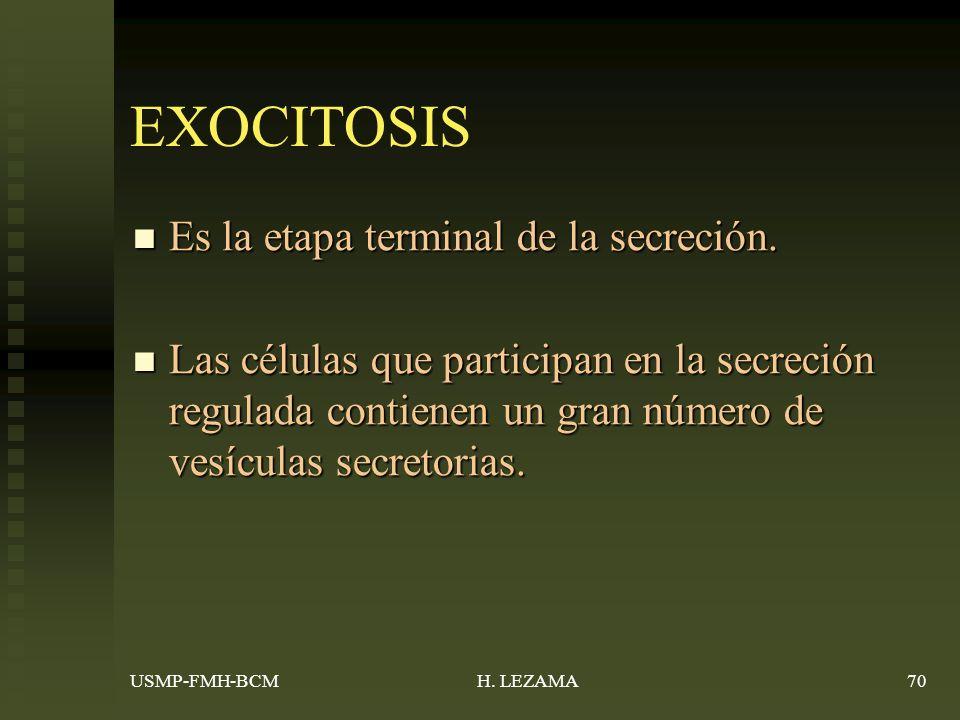 EXOCITOSIS Es la etapa terminal de la secreción.