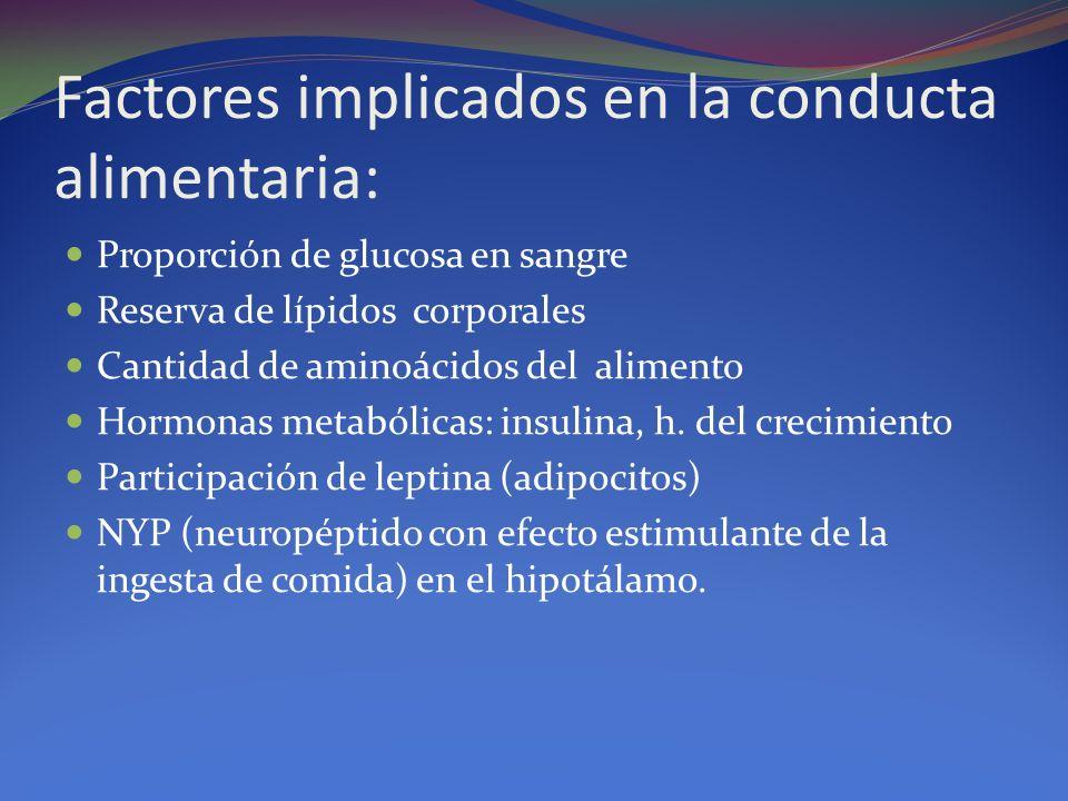 Factores implicados en la conducta alimentaria: