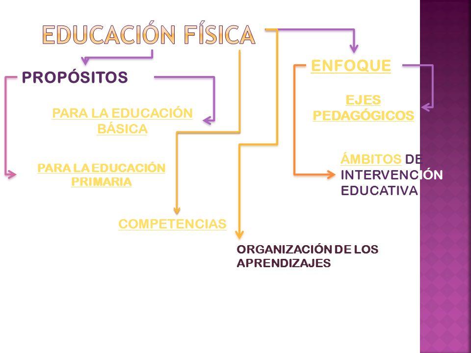 PARA LA EDUCACIÓN PRIMARIA