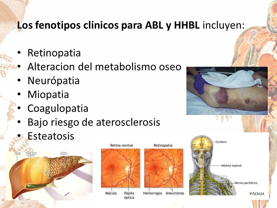Los fenotipos clinicos para ABL y HHBL incluyen: