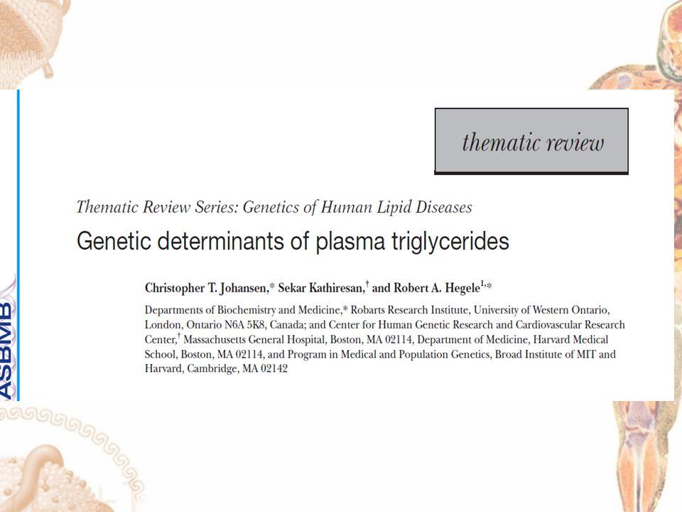 Determinantes genéticos de triglicéridos plasmáticos