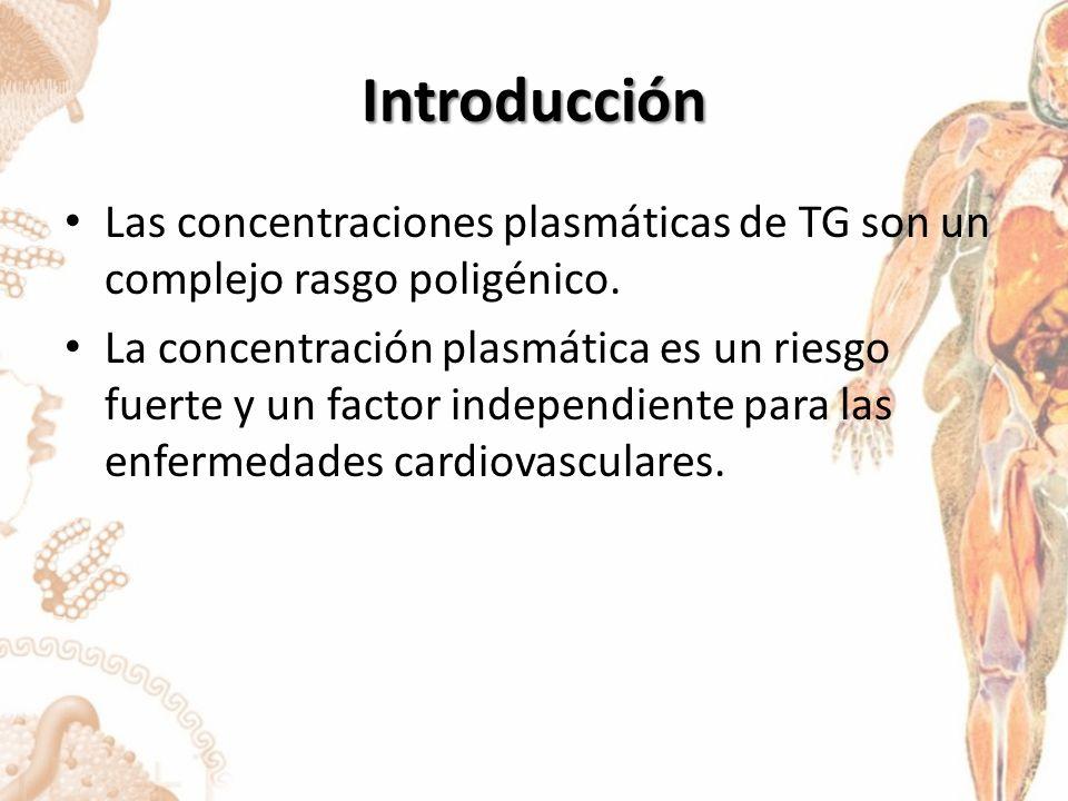 Introducción Las concentraciones plasmáticas de TG son un complejo rasgo poligénico.