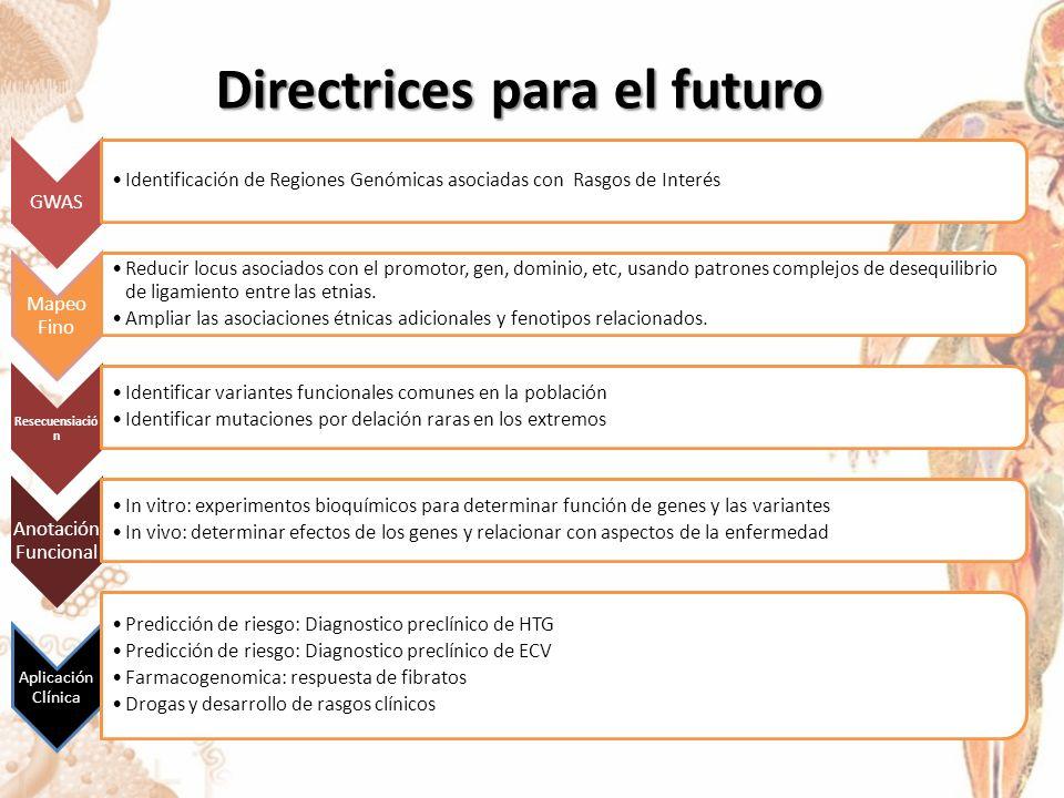 Directrices para el futuro