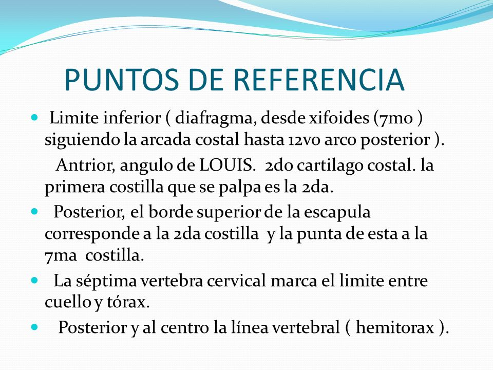 PUNTOS DE REFERENCIALimite inferior ( diafragma, desde xifoides (7mo ) siguiendo la arcada costal hasta 12vo arco posterior ).