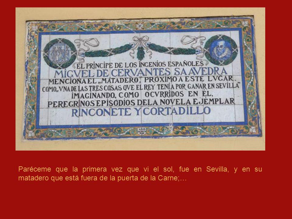 Paréceme que la primera vez que vi el sol, fue en Sevilla, y en su matadero que está fuera de la puerta de la Carne;…