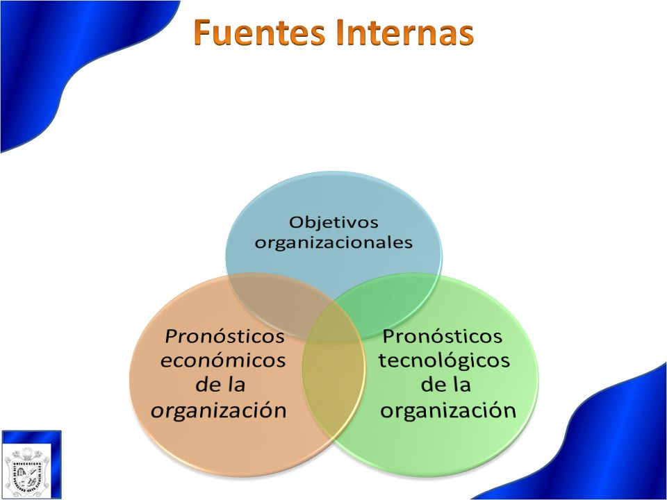 Fuentes Internas Objetivos organizacionales