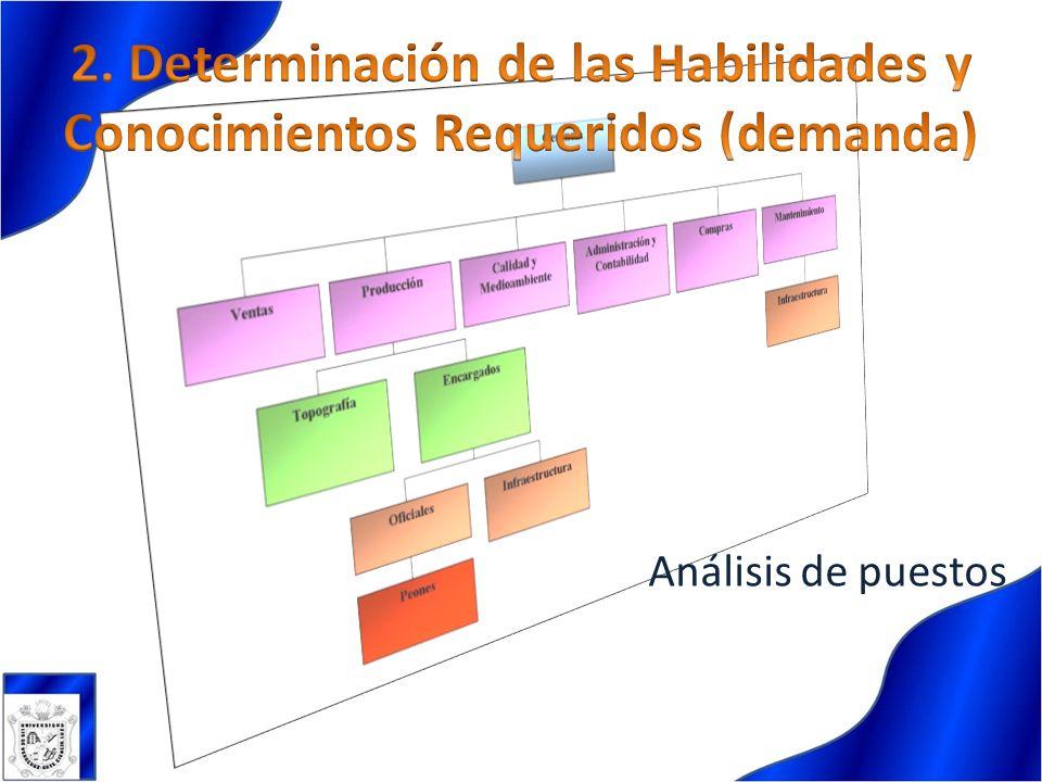 2. Determinación de las Habilidades y Conocimientos Requeridos (demanda)