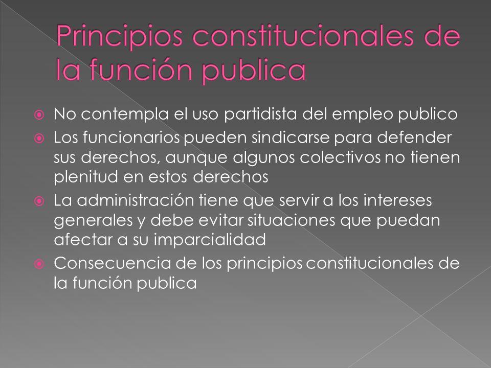 Principios constitucionales de la función publica