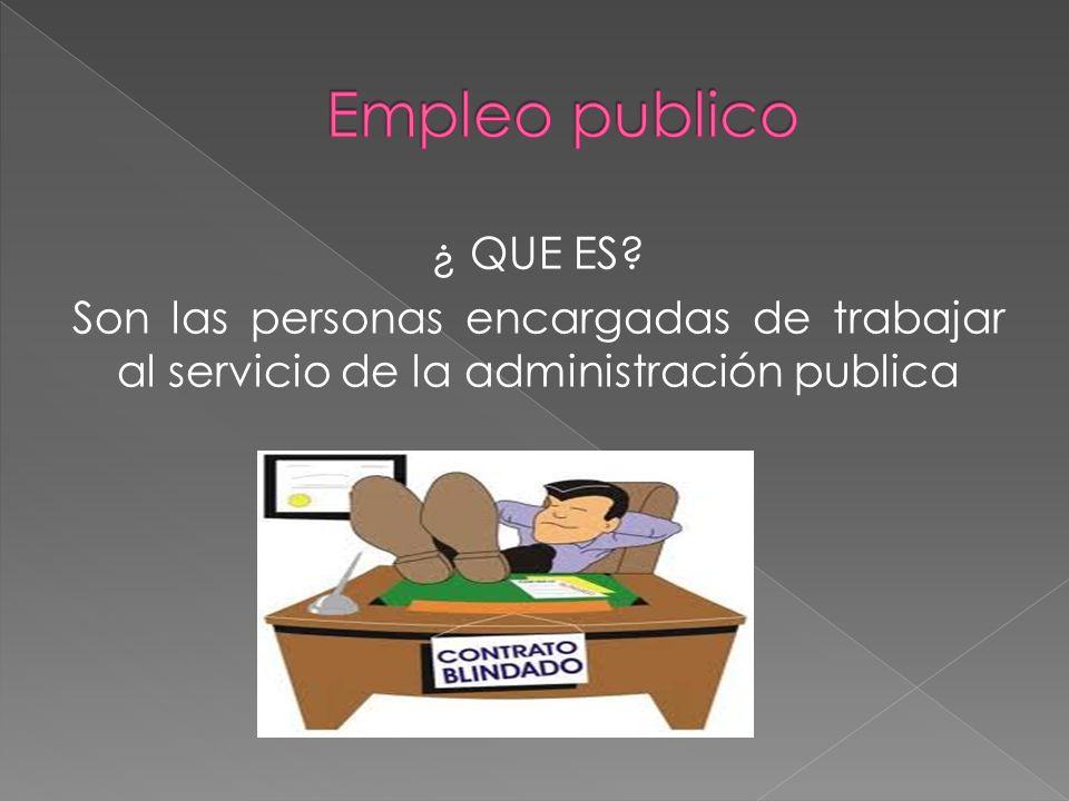 Empleo publico ¿ QUE ES.