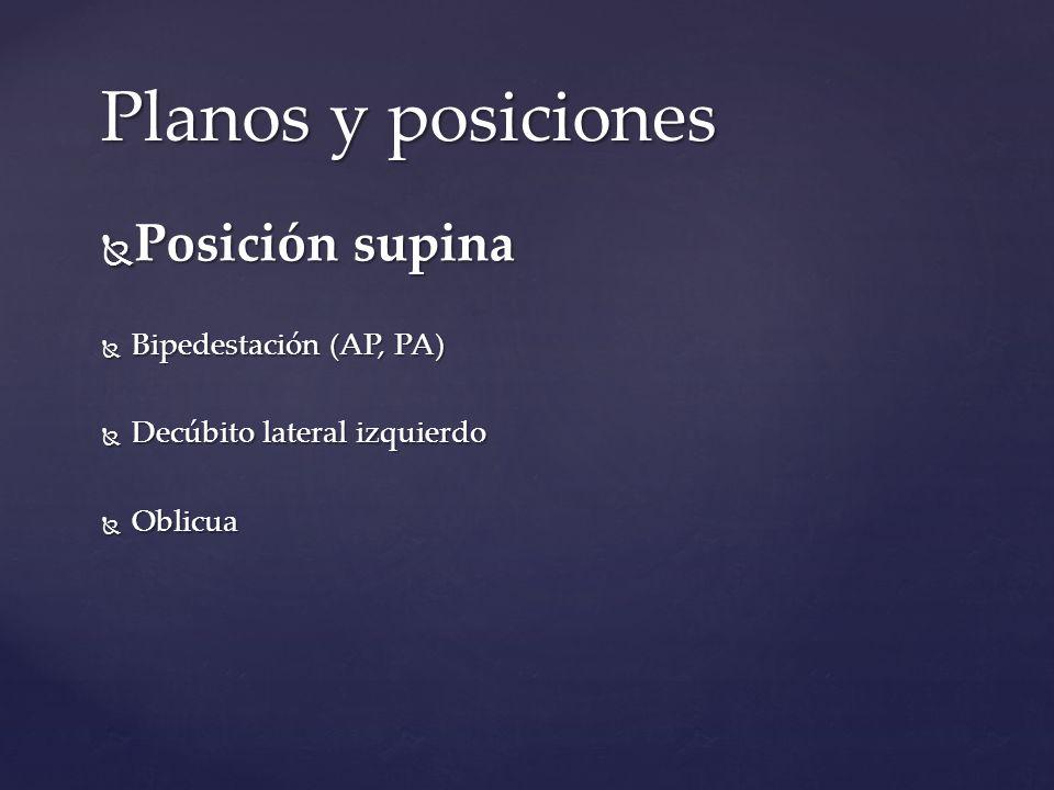 Planos y posiciones Posición supina Bipedestación (AP, PA)